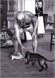 lump - the little hound, picasso's muse